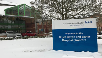 rde in the snow